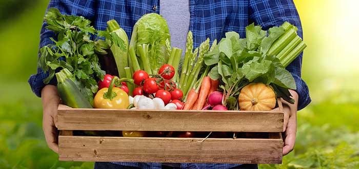 Frutos crudos y hortalizas