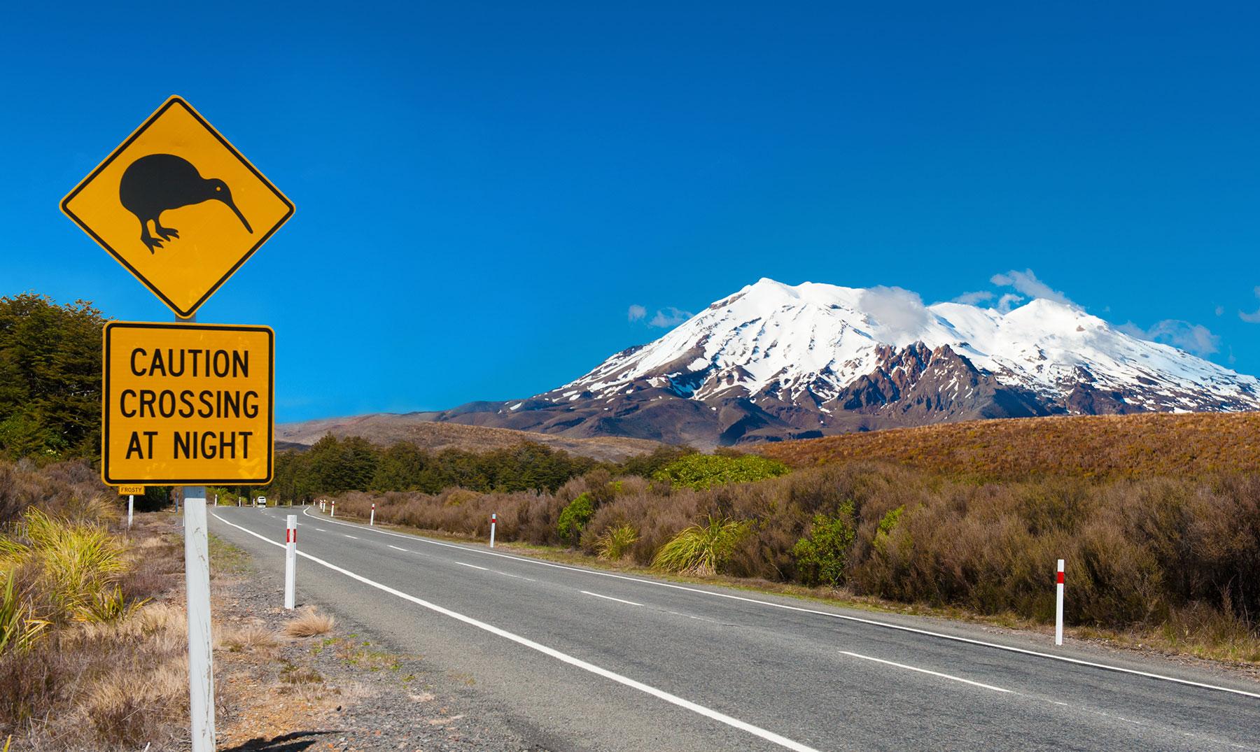 Beca Nueva Zelanda «La Experiencia de tu Vida» inglés + aventura