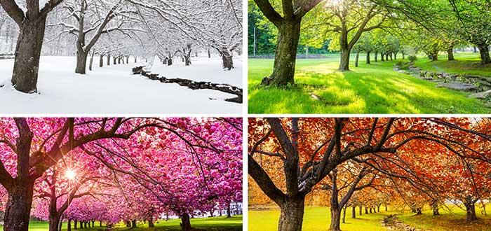 Cuatro estaciones bien definidas en Canadá