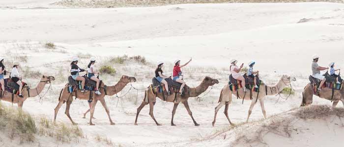 Cable Beach, Broome, la de los camellos