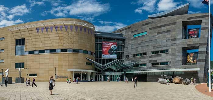 Te Papa National Museum   Bastión de la historia y la cultura neozelandesas