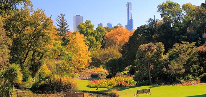 Que ver en Melbourne 1