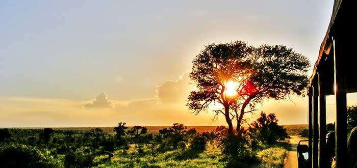 Parque nacional Kruger, cosas que necesitas