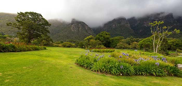 Que ver en Ciudad del Cabo, Jardín Botánico de Kirstenbosch