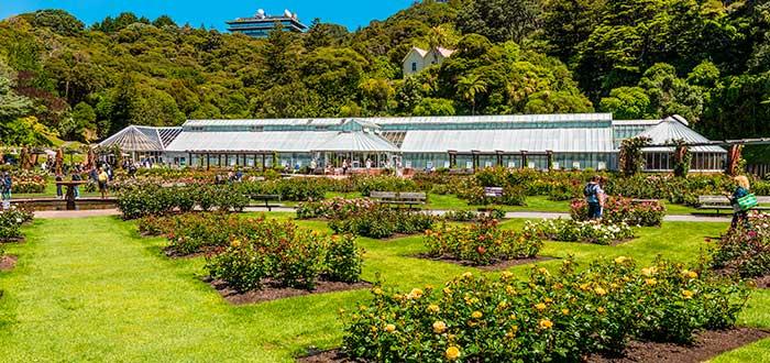 Qué ver en Wellington 2