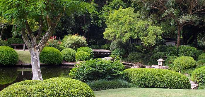 Qué ver en Brisbane, Botanic Garden