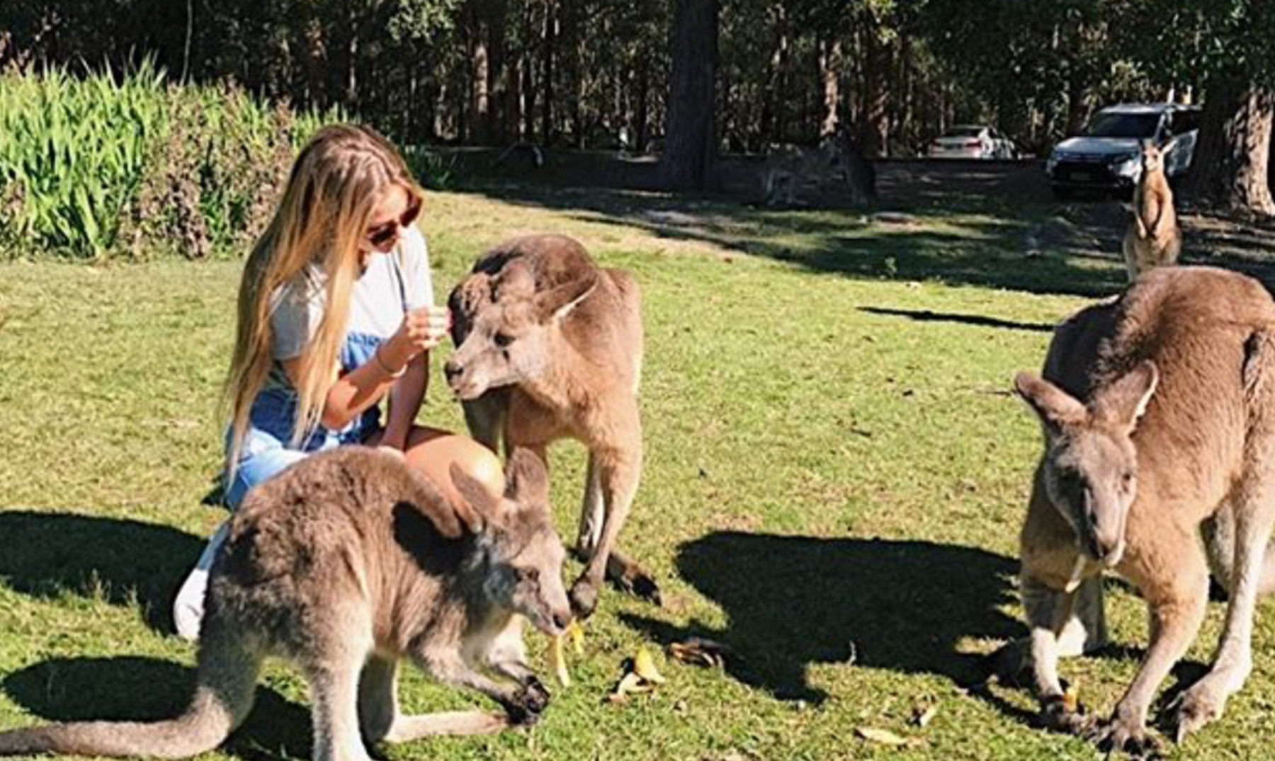 Experiencia Personal | Haciendo de Australia mi segundo hogar