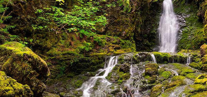Parque-nacional-fundy-dickson-falls