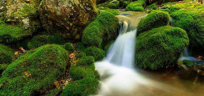 Parque-nacional-fundy-valut-falls