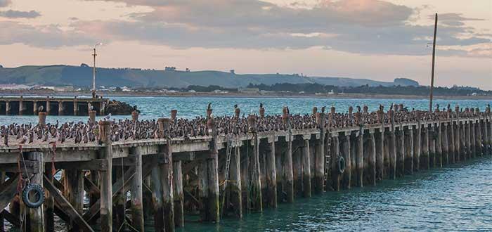 Muelle de Oamaru
