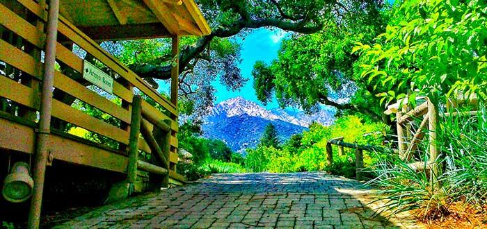 Que ver en Santa Barbara Jardín Botánico