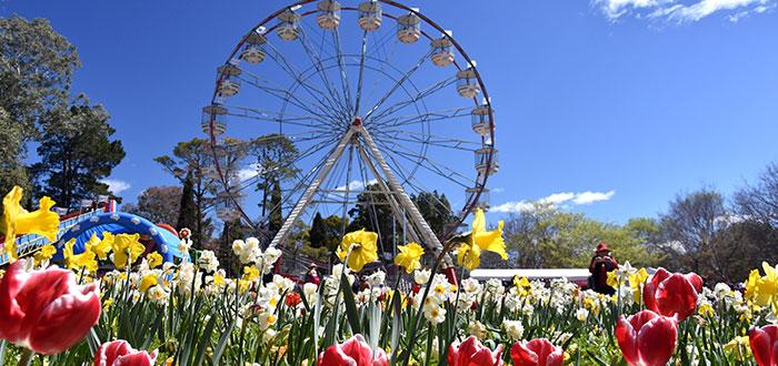 Qué ver en Canberra | Parque Commonwealth