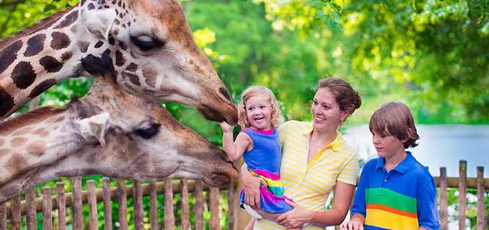 Que ver en Baltimore City Zoo