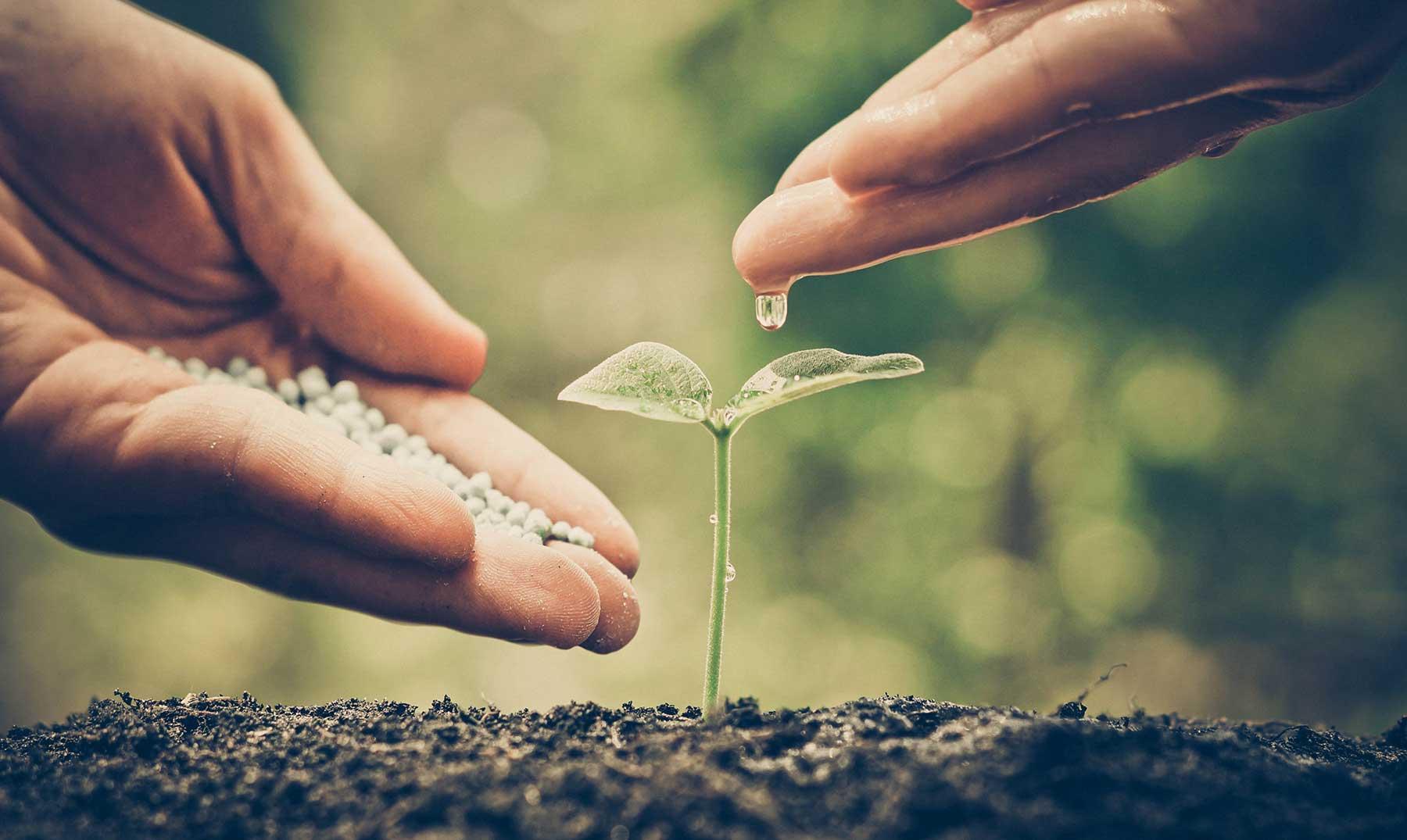 GrowPro Experience | Comprometidos con nuestro Planeta