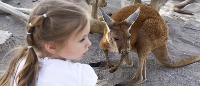 Para trabajar con niños en Australia necesitas la Blue Card