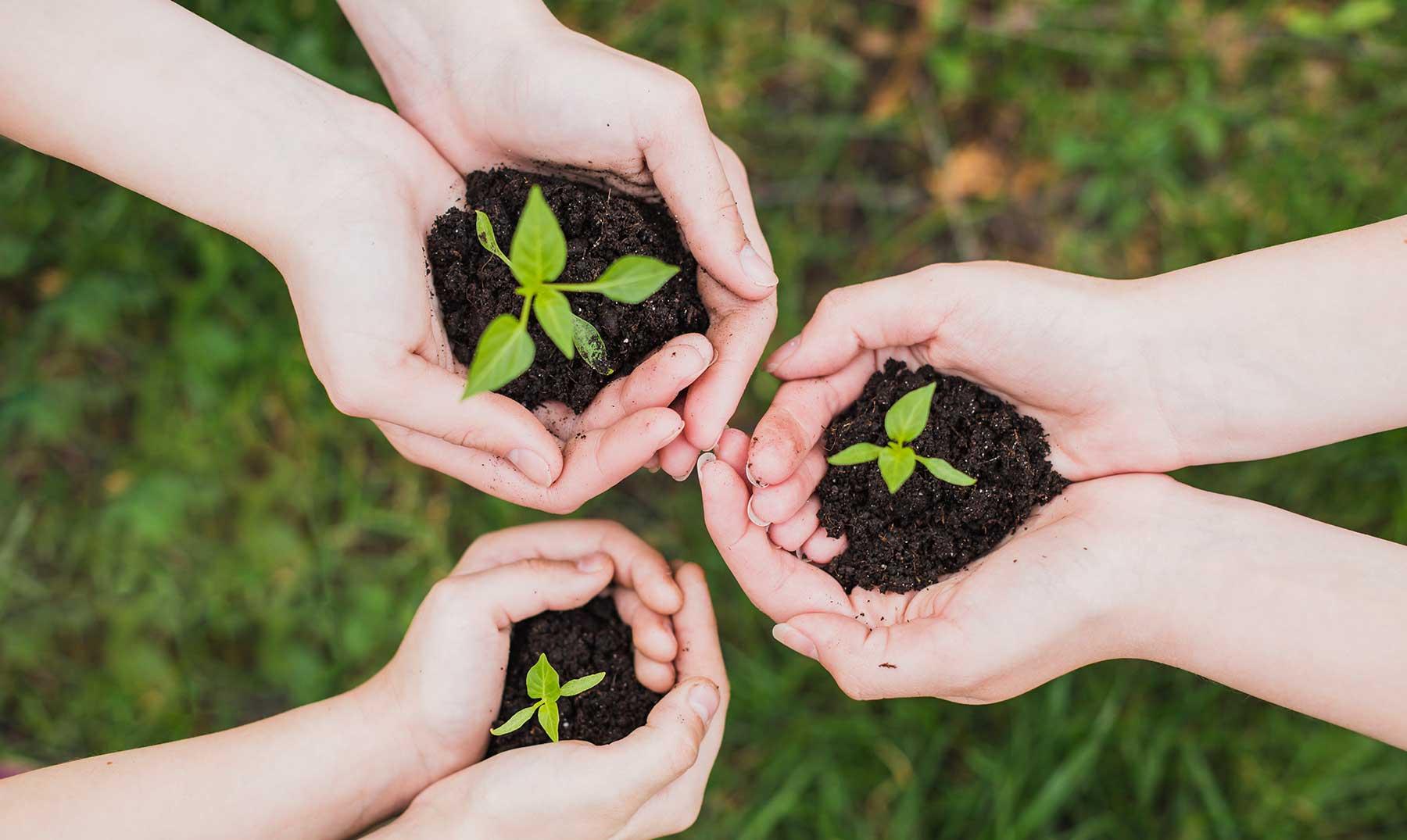 Carreras universitarias relacionadas con el medio ambiente