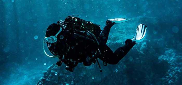 Estudiar Biología Marina | Profesiones ambientales