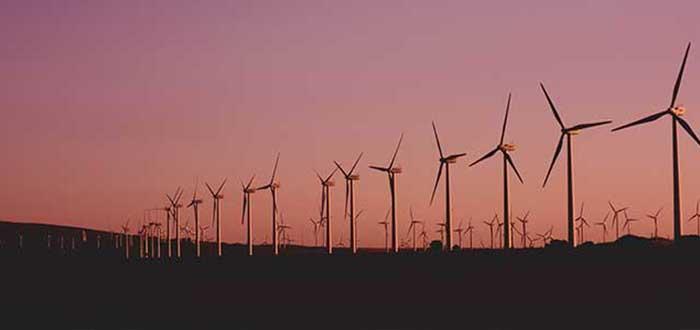 Especialista en energías renovables | carreras universitarias relacionadas con el medio ambiente