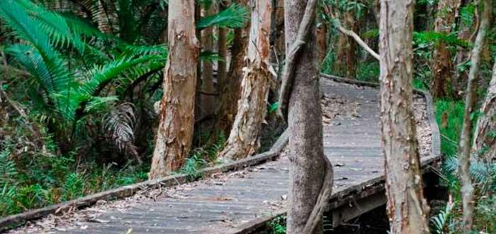 Santuario de Cumbebin