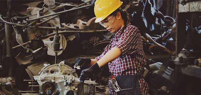 federal skill worker
